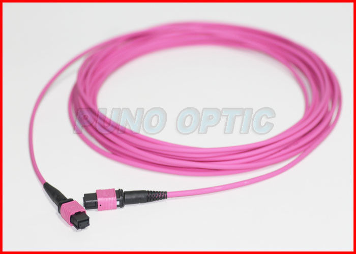 40Gbps 3.0mm 12 Array MTP Fiber Optic Cable , Riser Rated Patch Cord